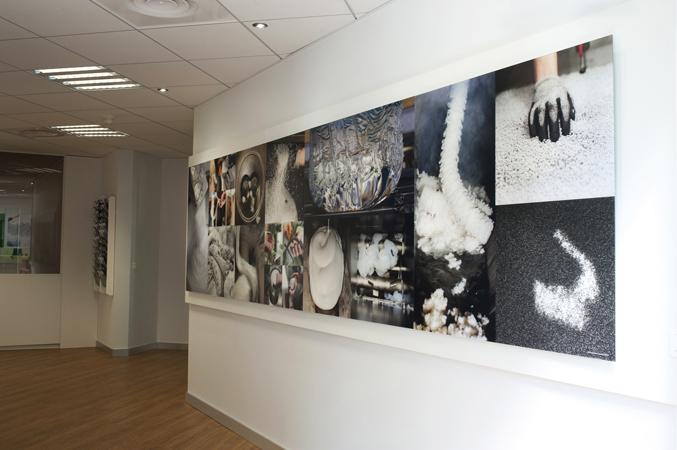 Fresque photographique pour l'entreprise Multibase par Anne-Marie Louvet photographe