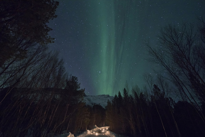 Aurores boréales_ Laponie norvégienne ©Anne-Marie Louvet photographe
