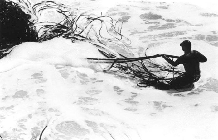 Récolte des algues par les indiens mapuches du Chili, par Anne-marie Louvet photographe