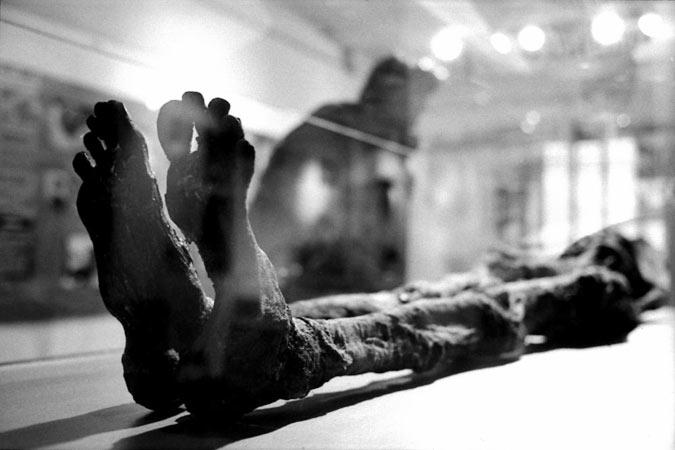 Momie au Museum de lyon par Anne-Marie Louvet photographe
